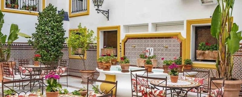 Decoración patio andaluz plantas